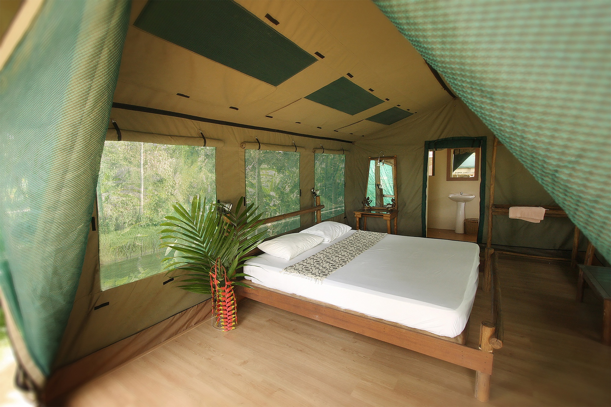 RainforestCamp  (1)